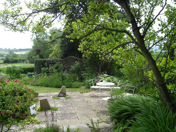 Looking down the garden to one of the seating areas