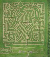 Aerial view of the Hidcote Maize Maze. Photo (c) John Righton