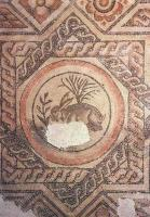 The Hare Mosaic at the Corinium Museum, Cirencester