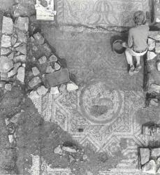 The uncovering of the Hare mosaic, Photo: Corinium Museum