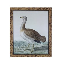 A watercolour of a heron in a faux tortoiseshell frame